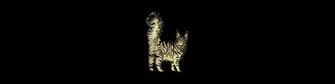 faixa-gato1