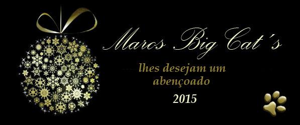 natal2014-2